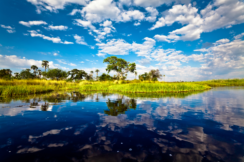 Exchange Currency to Travel Okavango Delta Botswana